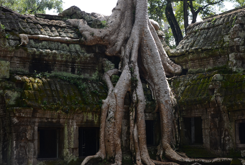 Zaduch i zaduma nad ruinami Angkor Wat