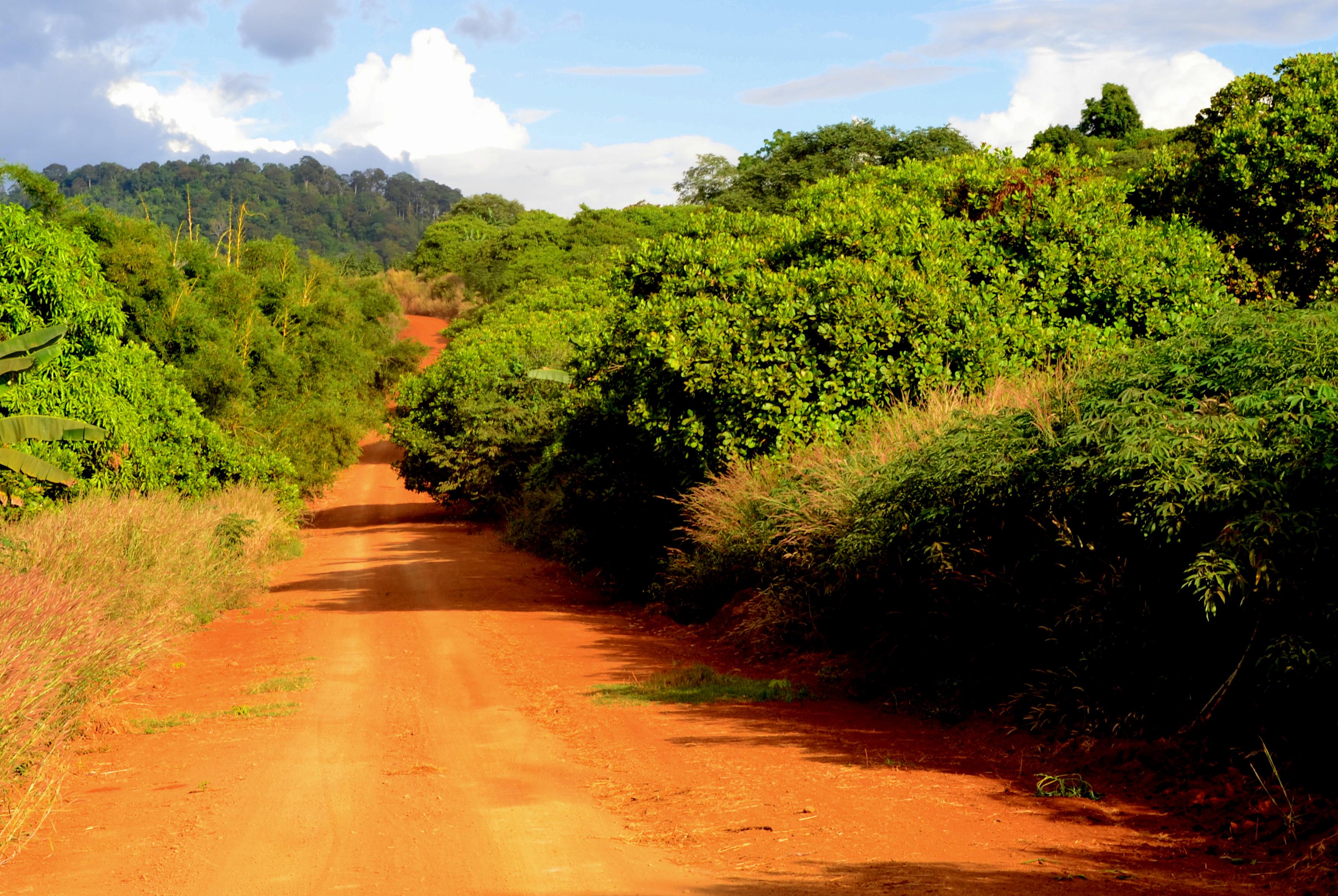 Czerwone drogi Ratanakiri