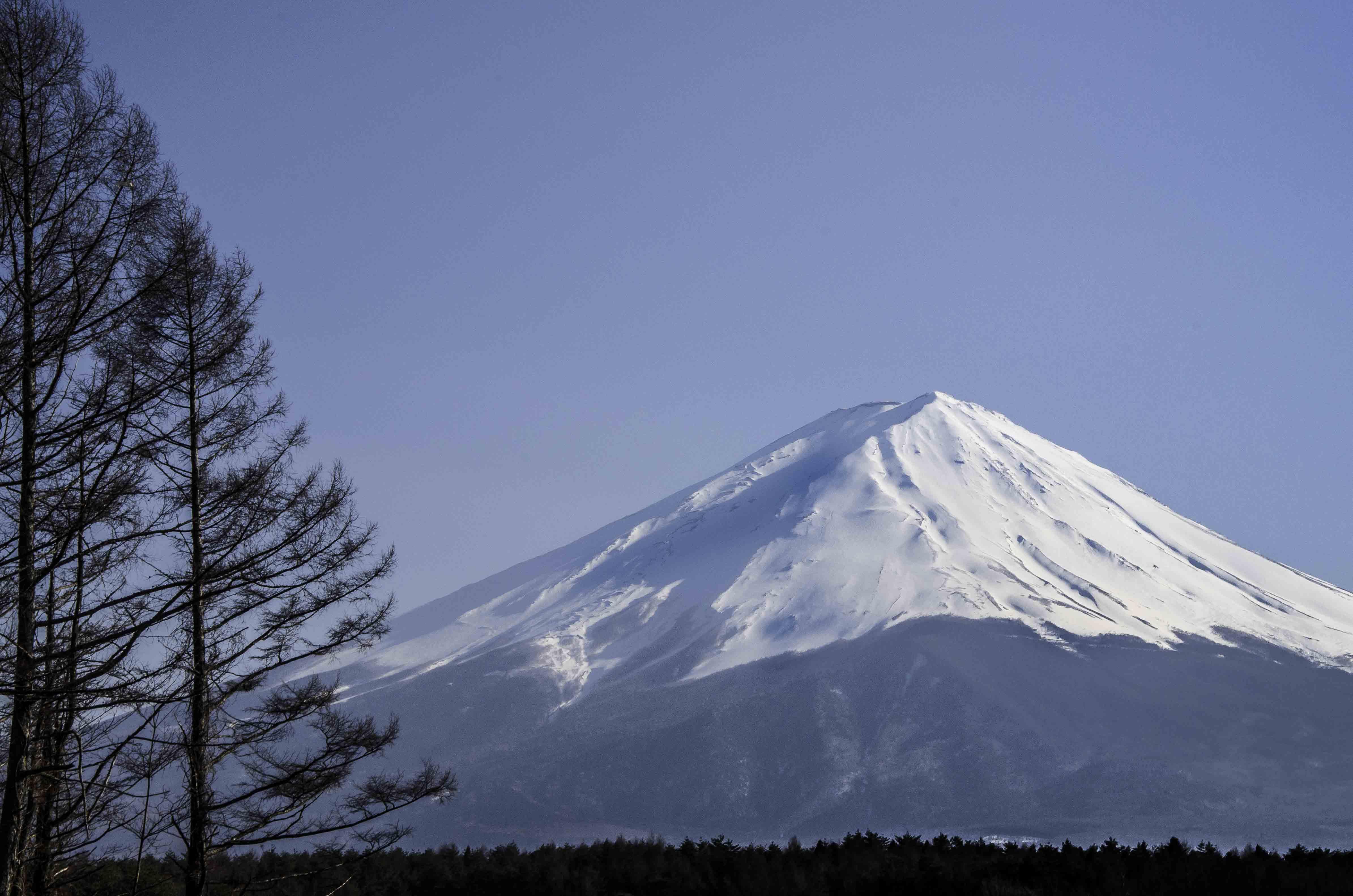 Fuji, rowery i my