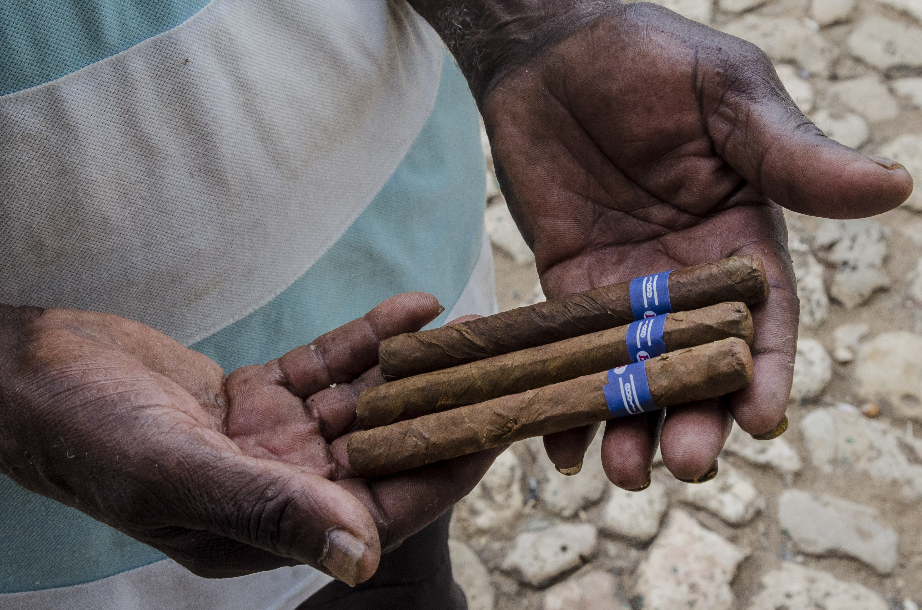 Trynidad – w manufakturze cygar