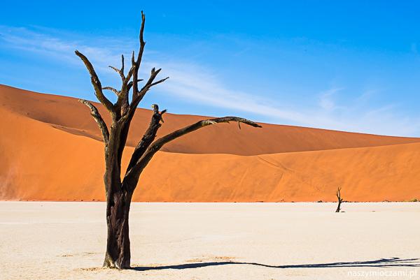Dlaczego i jak do Namibii? – Informacje Praktyczne