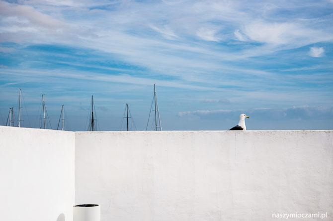 Lizbona w styczniu. I dorsz z mleka.